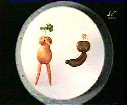 Veggies in Woz