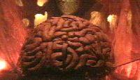 HS's big brain